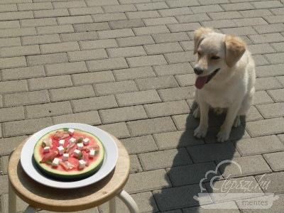 dinnye pizza